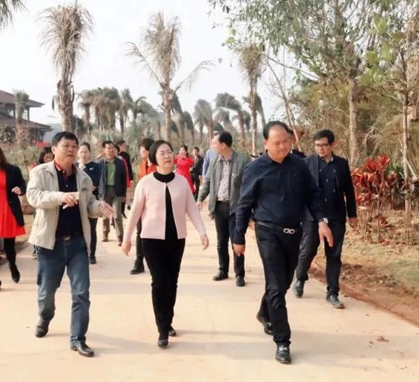 张蔚兰开展节前农贸、交通和旅游市场检查调研活动