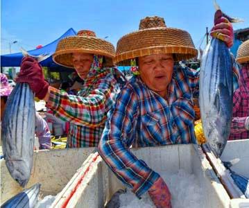 南海开始伏季休渔 海南1.7万艘渔船回港