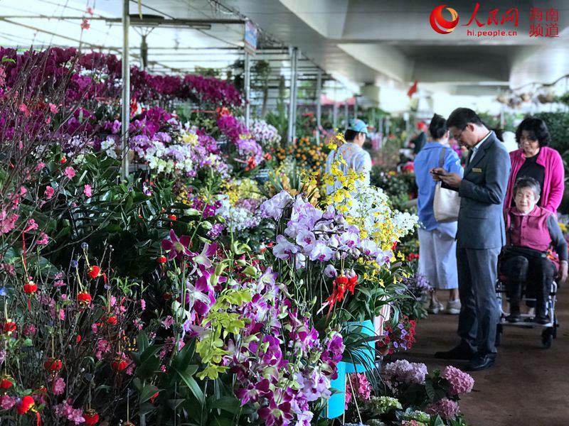 花市喜迎新春 年花消费群体正在不断年轻化