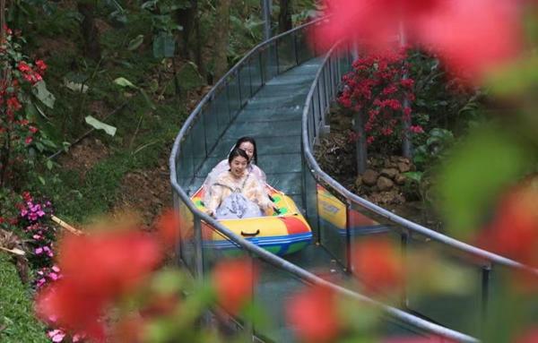 漫步雨林观赏瀑布体验漂流打卡网
