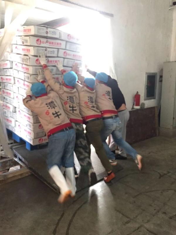 1.1万只潭牛文昌鸡冻鸡正在装车
