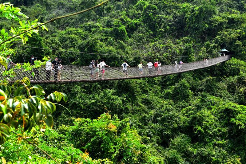 """游客在三亚亚龙湾热带天堂森林旅游区""""森""""呼吸"""