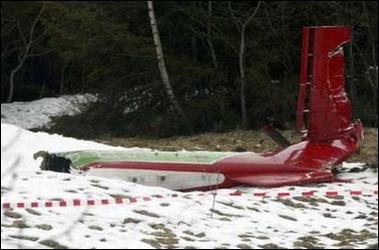 奥地利发生飞机相撞事故 两架飞机上8人死亡